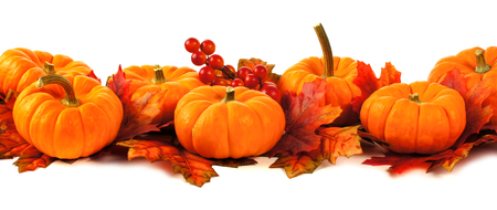pumpkin border: Autumn border of pumpkins and leaves over a white background