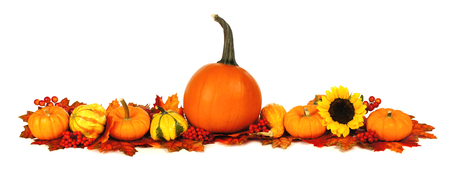 pumpkin border: Long autumn border with pumpkins, leaves and flowers over a white background Stock Photo