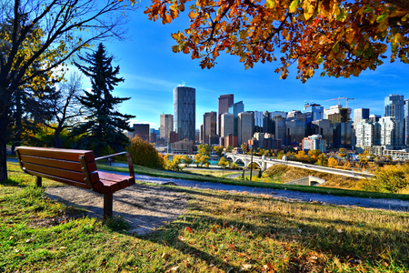 View from a park overlooking the skyline Calgary, Alberta during autumn photo