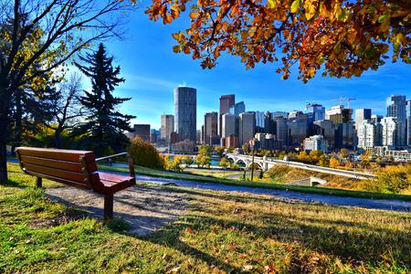 ensolarado: Vista de um parque com vista para o horizonte de Calgary, Alberta durante o outono