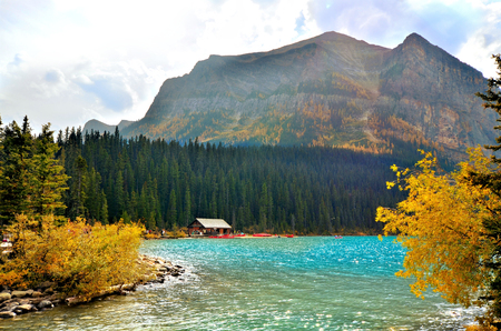 jungle leaves: View at Lake Louise, Banff National Park, Canada with autumn colors Stock Photo