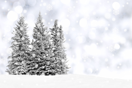Snowy trees with twinkling silver background and snowflakes photo