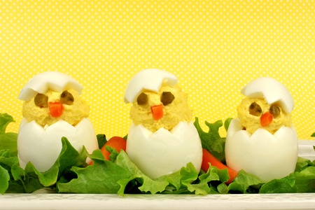 Fun Easter breakfast of hatching chicks made of boiled eggs with yellow background photo