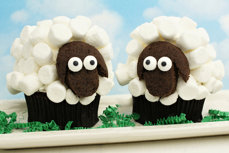 Two fun Easter lamb cupcakes with sky background