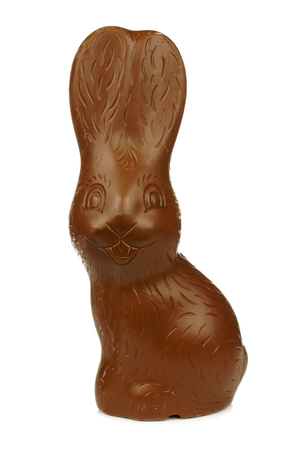 Single chocolate Easter bunny isolated on a white background
