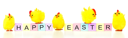 Happy Easter wooden blocks with yellow fuzzy chicks on a white background Stock Photo