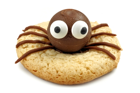 halloween spider: Single Halloween spider cookie isolated on a white background Stock Photo