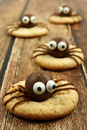 wood spider: Group of chocolate Halloween spider cookies on rustic old wood