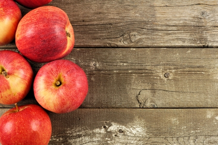fall harvest: Freshly harvested apples, side border on rustic aged wood background Stock Photo