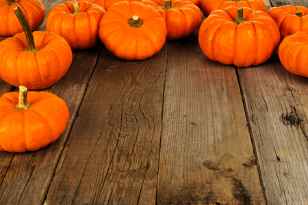 brown background: Top border arrangement of autumn pumpkins against an old wood background Stock Photo
