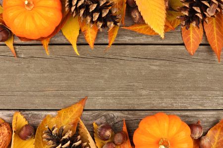 pumpkin border: Autumn double border of pumpkins, leaves and nuts on a rustic wooden background Stock Photo
