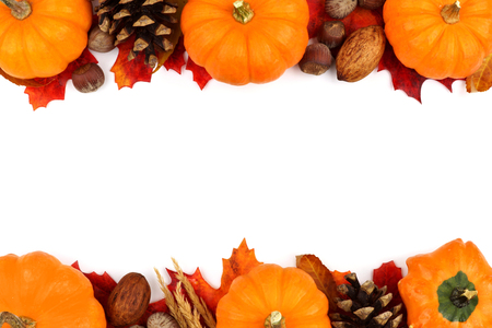 pumpkin border: Autumn double border of pumpkins leaves and nuts isolated on a white background Stock Photo
