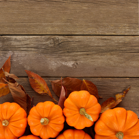 Bottom border of scattered autumn pumpkins and leaves on rustic wood background, overhead view