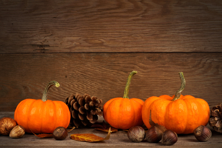 Autumn mini pumpkins with leaves and nuts on a rustic old wood background