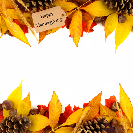 fall border: Happy Thanksgiving gift tag with double border of colorful leaves and pine cones isolated on white Stock Photo