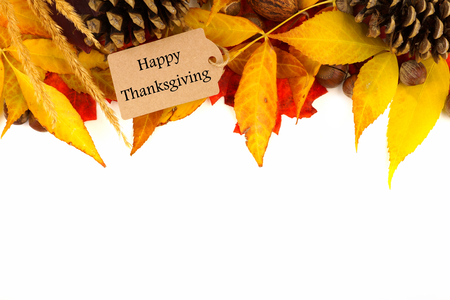 Happy Thanksgiving gift tag with border of colorful leaves and pine cones isolated on white