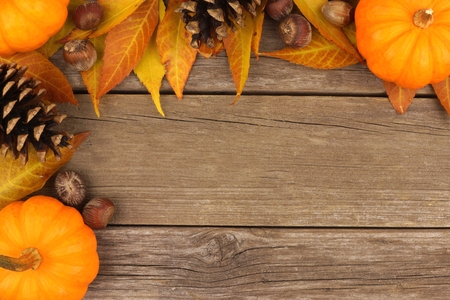 brown background: Autumn corner border of pumpkins, leaves and pine cones against a rustic wood background Stock Photo