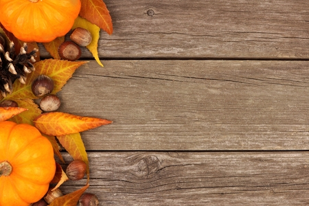 Autumn side border of pumpkins and leaves against a rustic wood background