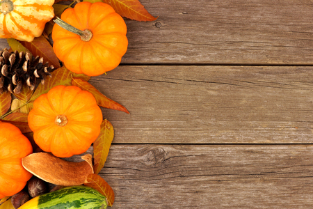 pumpkin border: Autumn side border of pumpkins, leaves and gourds against a rustic wood background