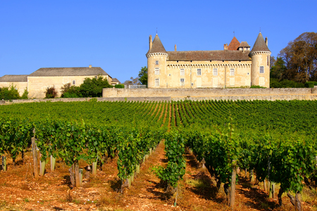 Medieval chateau in the beautiful vineyards of Burgundy France