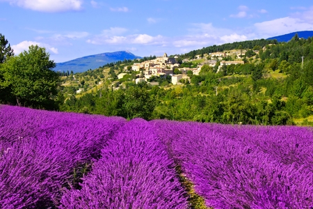 hilltop: View of a hilltop village in Provence, France over beautiful rows of lavender