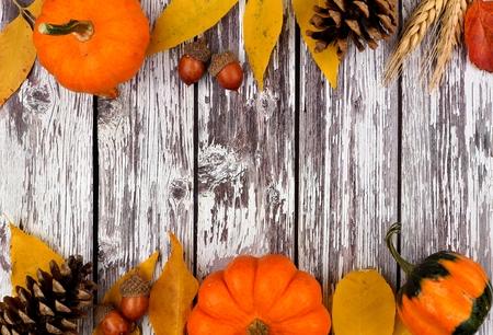 hojas antiguas: Otoño borde doble de las calabazas, las hojas y las calabazas contra un fondo de madera blanca vieja rústica