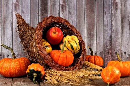 Harvest cornucopia with pumpkins, apples and gourds on rustic wood background Standard-Bild