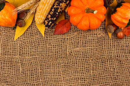gourds: Autumn top border of pumpkins, leaves and gourds against a burlap background