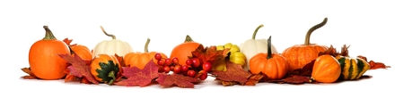 Long border of pumpkins, gourds and red fall leaves isolated on a white background