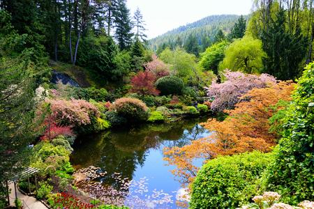 Butchart Gardens, Victoria, Canada. Vue sur un étang dans le jardin en contrebas avec des fleurs printanières vibrantes. Banque d'images