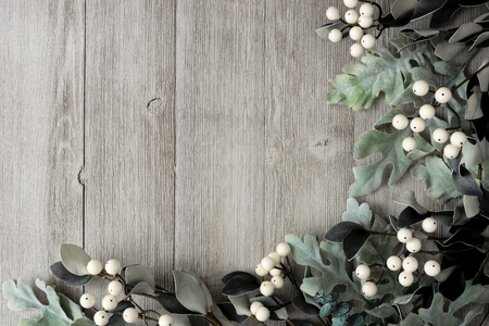 Corner border of silver green leaves and white berries over a rustic gray wood background. Top view with copy space.