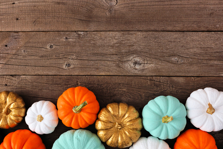 Autumn bottom border of various colorful pumpkins on a rustic wood background. Top view with copy space.