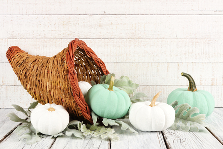 Thanksgiving cornucopia filled with white and teal pumpkins against a white wood background Stock Photo
