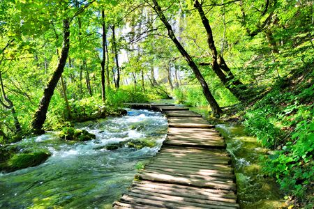 Wooden boardwalk through the water filled landscape of Plitvice Lakes National Park, Croatia