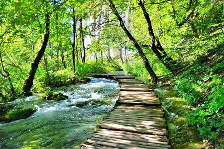 Wooden boardwalk through the water filled landscape of Plitvice Lakes National Park, Croatia Banco de Imagens - 128569211