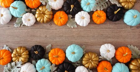 Fall double border banner of colorful pumpkins and silver leaves against a wood background Standard-Bild
