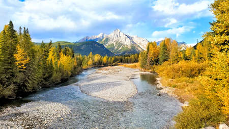 River through the Canadian Rocky Mountains during autumn with colorful fall foliage Standard-Bild