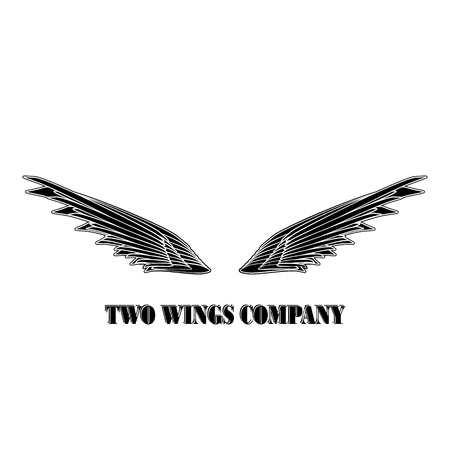 Two  black wings logo company. Two wings with white stripes vector