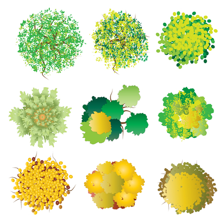 Rośliny i drzewa widok z góry zestaw 3 do projektowania krajobrazu, ilustracji wektorowych Ilustracje wektorowe