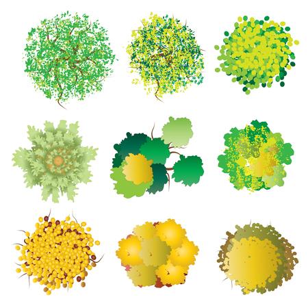 Rostliny a stromy pohled shora set 3 o krajinu design, vektorové ilustrace