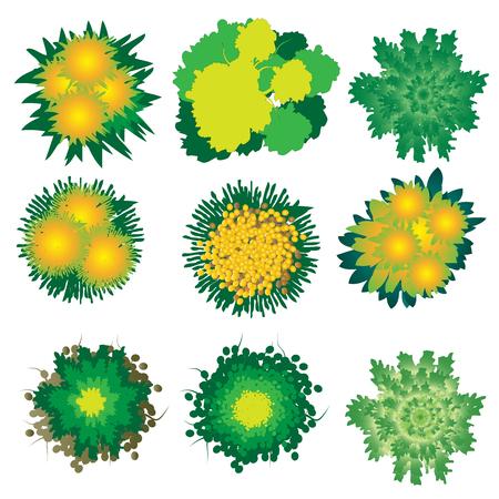 Rośliny i drzewa widok z góry zestaw 4 do projektowania krajobrazu, ilustracji wektorowych