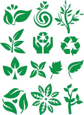 Leaf & Tree Stock Vector - 11343532