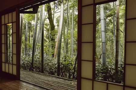 View of Japanese forest from inside an old, traditional designed building in Kyoto, Japan