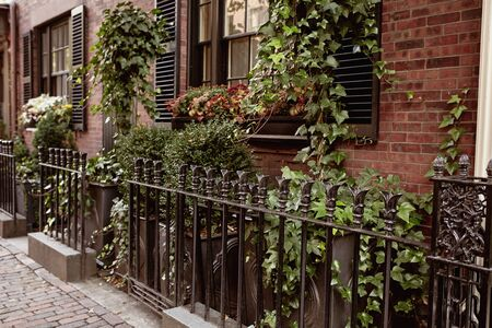 Closeup of wrought iron fence surrounded by foliage in the historic neighborhood of Beacon Hill in Boston, Massachusetts. Stockfoto