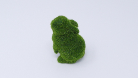 rabbit standing: Small green grass rabbit standing on its back feet white background