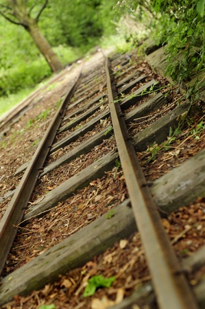 disused: Old Railway Track in Kirkstall Woodland