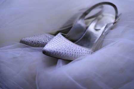 Bridal Shoes on Veil Stock Photo - 11918565