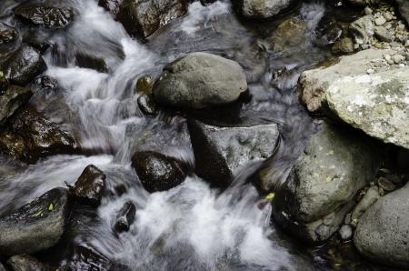 swirling: water in stream swishing around rocks