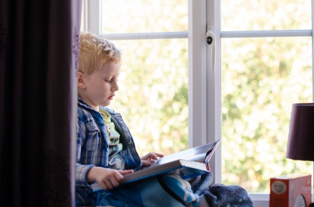 young child reading a book on a window seat behind curtain of living room