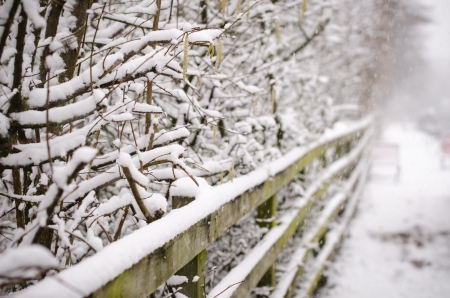 Snowy fence and branches by a tow path in England Stock Photo